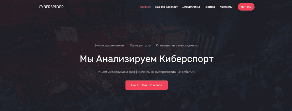 cyberspider.ru