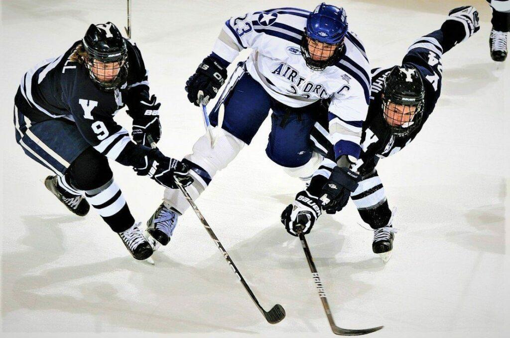 вилки на хоккей