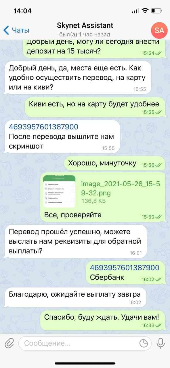 Личная проверка бота Skynet