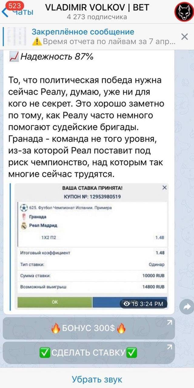 Телеграмм канал Владимир Волков
