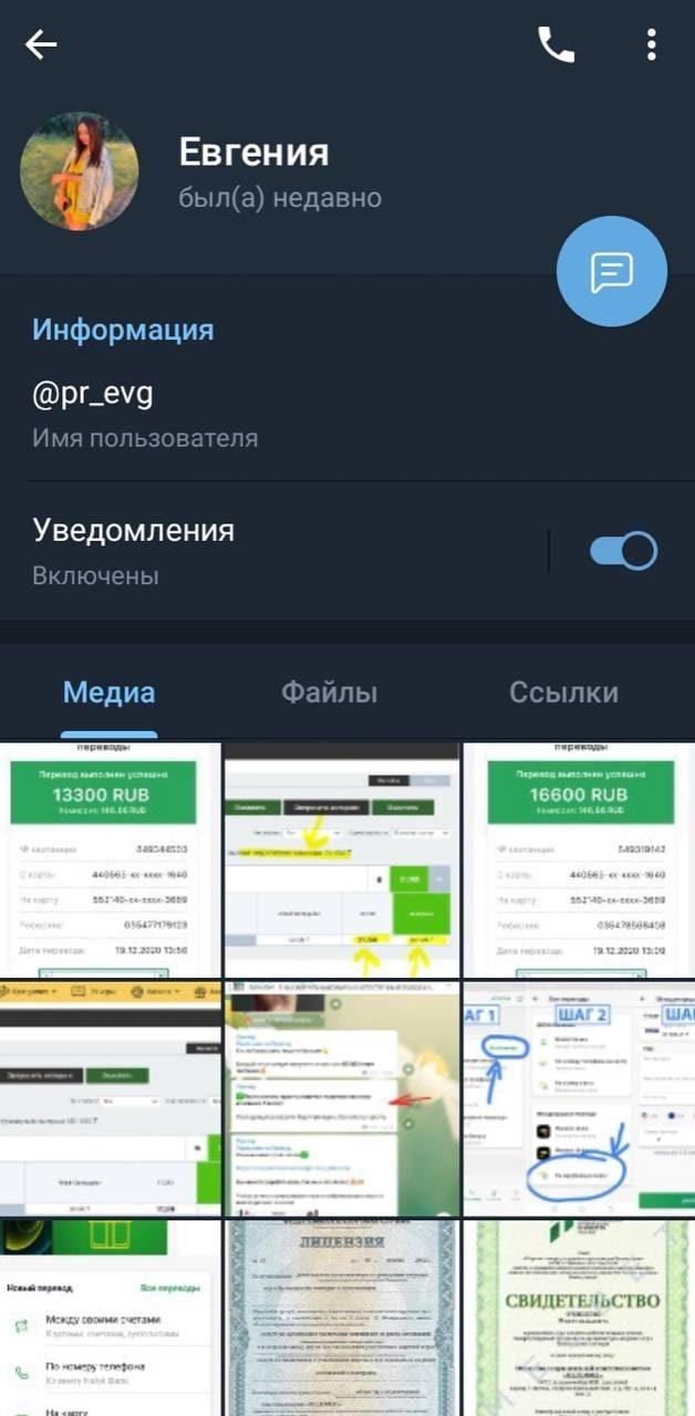 Телеграмм-канал о заработке Приход - страница Евгении