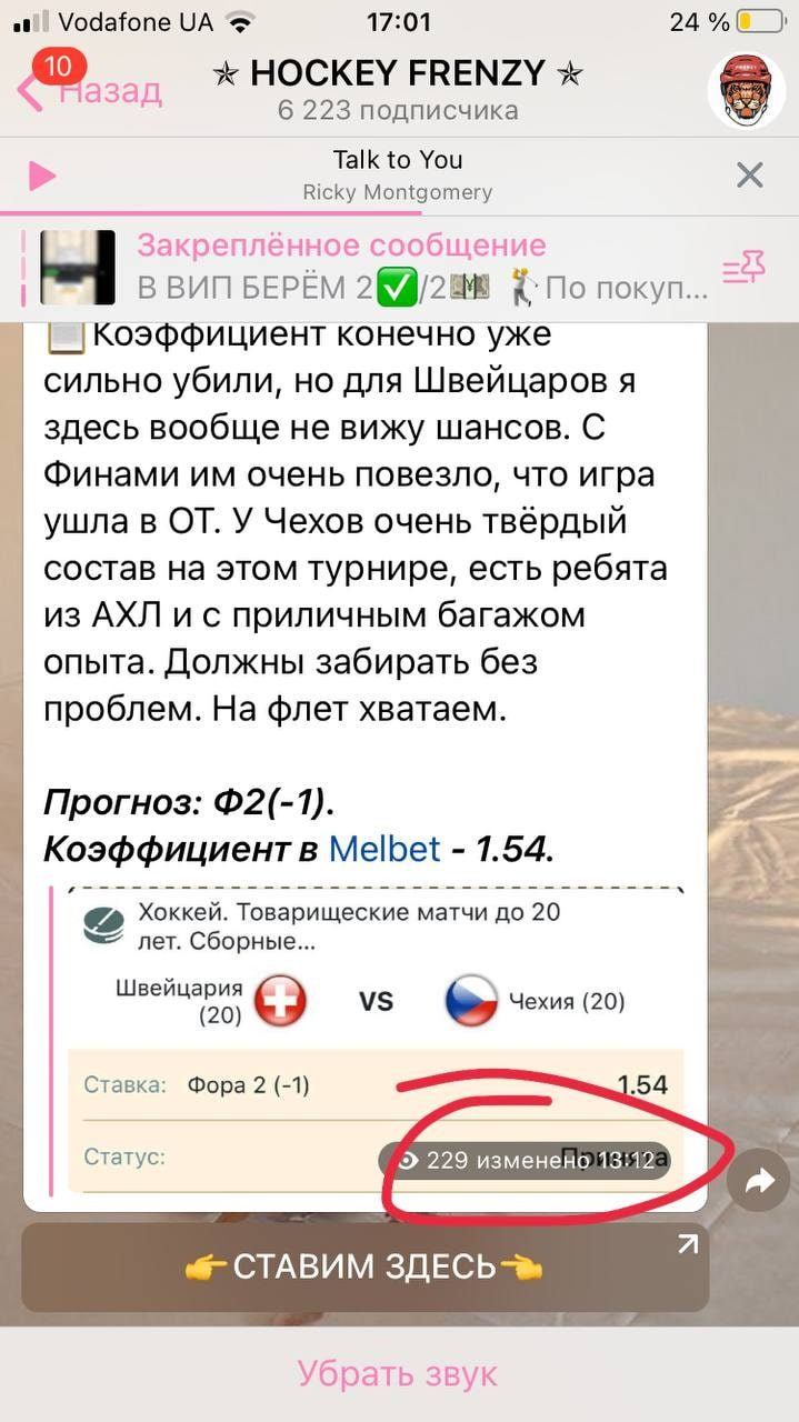 Hockey Frenzy - раскрутка счета в Телеграм