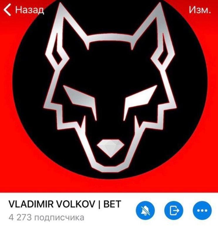 Владимир Волков Телеграмм
