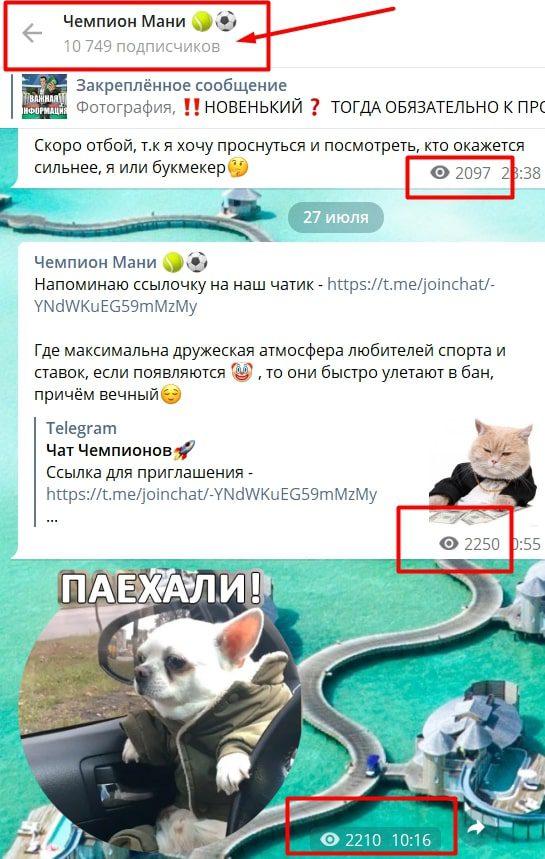 Просмотры и подписчики в Телеграмм Чемпион Мани