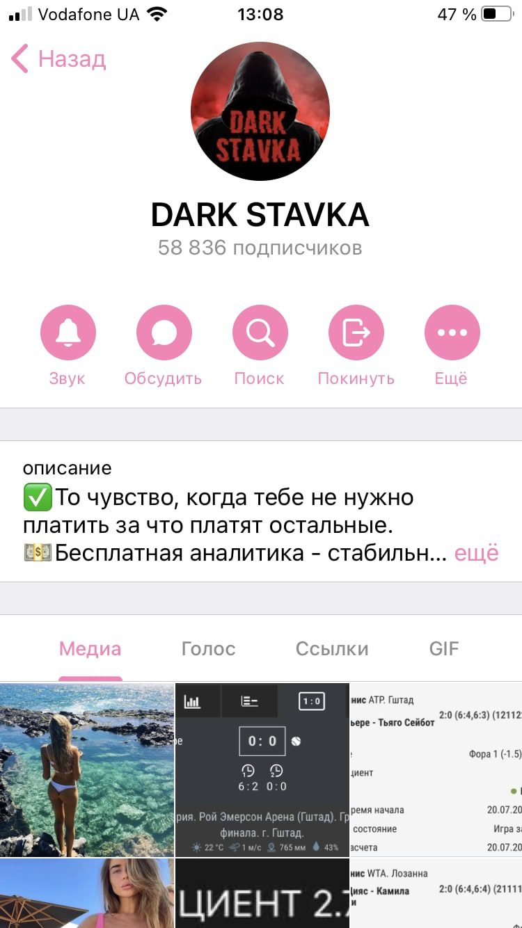 Dark Stavka - Телеграмм канал