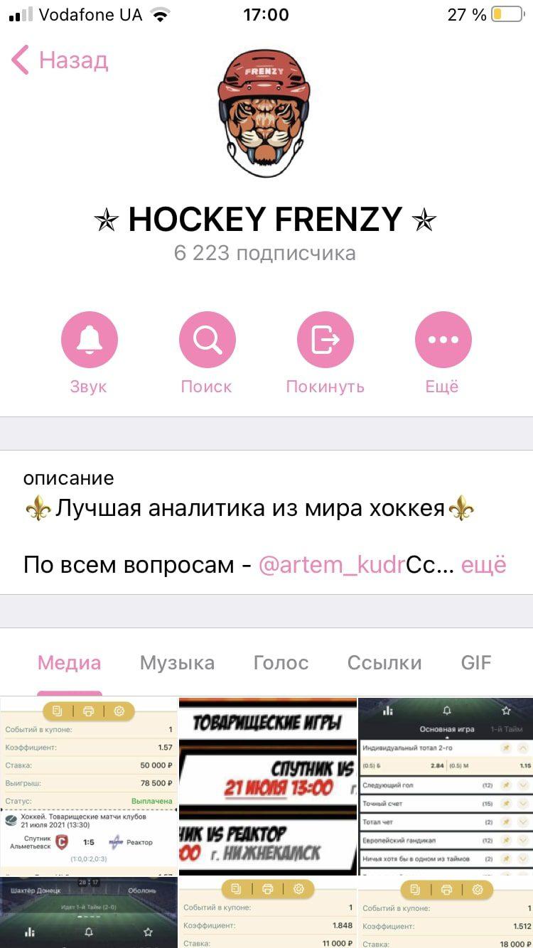 Hockey Frenzy - Телеграмм канал каппера Артема Кудрявцева