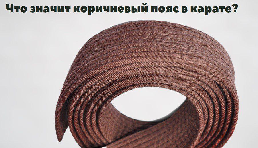 коричневый пояс в карате